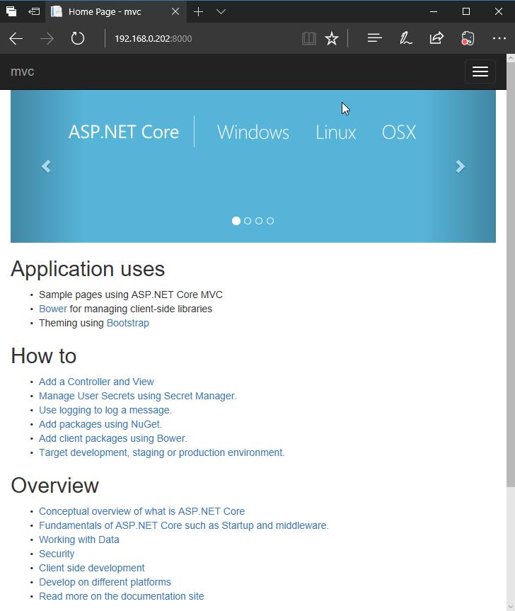 ASP.NET Core MVC on Raspberry PI