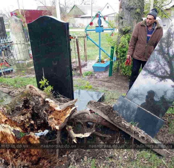 дерево кладбище