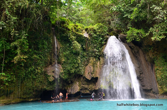 halfwhiteboy - kawasan falls, badian, cebu 10