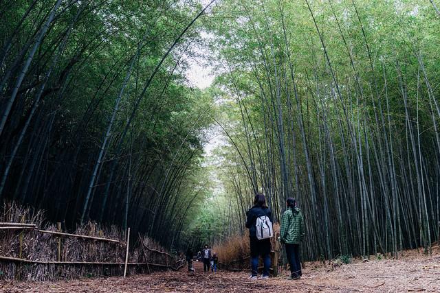 Oodataka_Chikurin_99_35mm