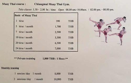 Brochure Chiangmai Muay Thai Gym Chiang Mai Thailand