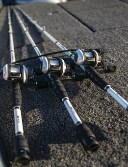 BEST BASS RODS