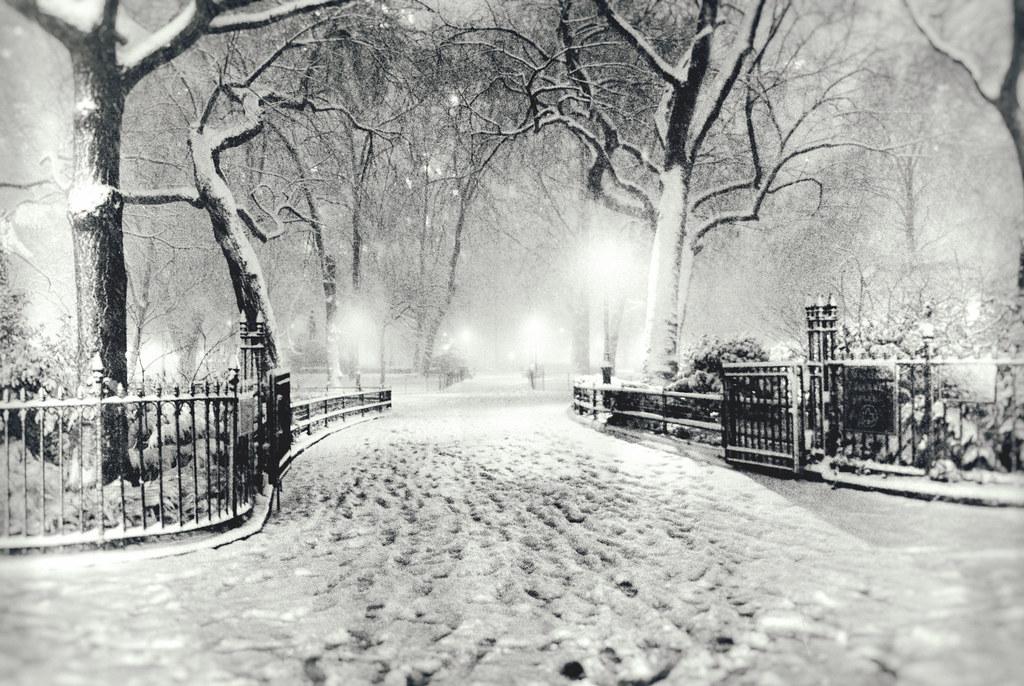 City Winter Snow Night