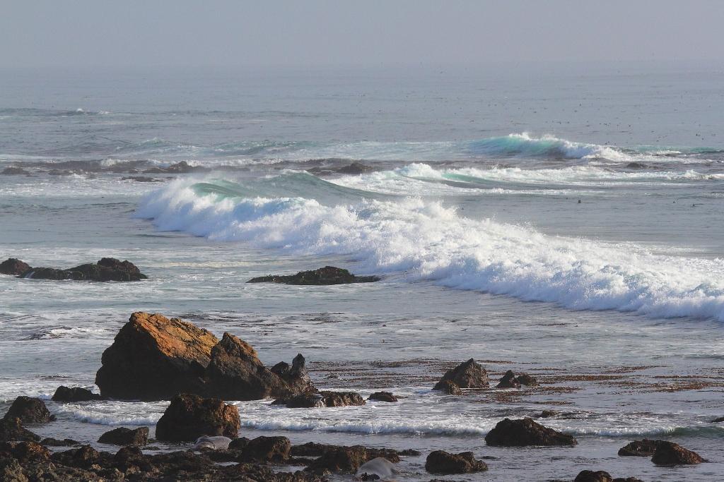 IMG_6292 Surfing Wave, Piedras Blancas