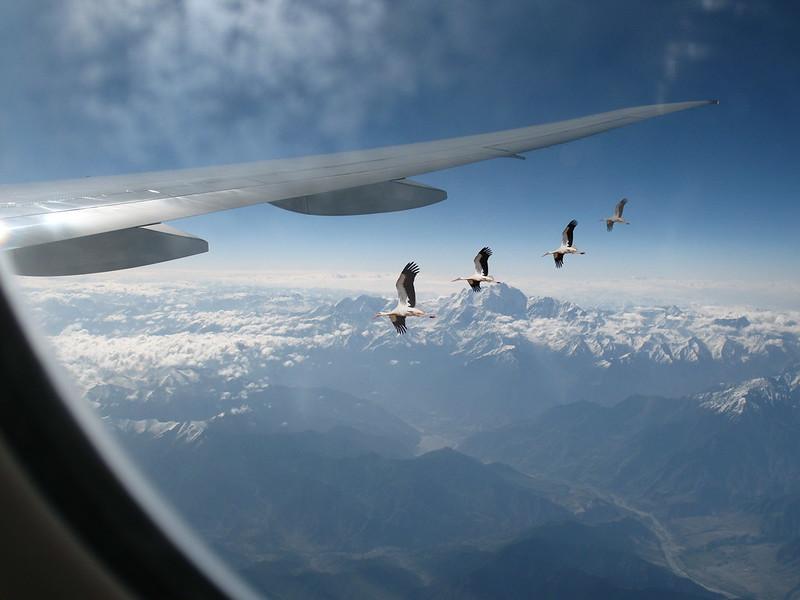 Rode iznad Himalaja