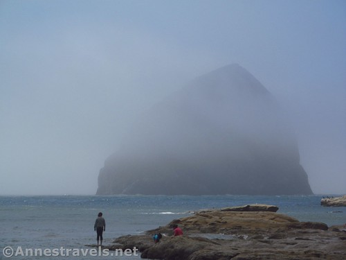 Haystack Rock begins to appear out of the mist at Cape Kiwanda, Oregon