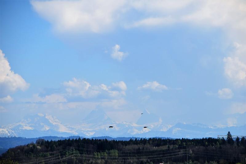 Alps 09.04 (2)