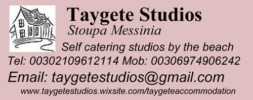 taygetestudios