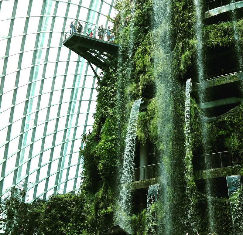 gardens by the bay singapore - cloud forest