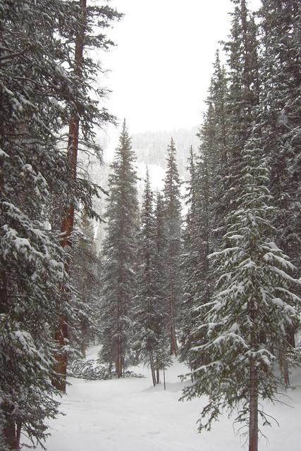 Viaje a Colorado 6