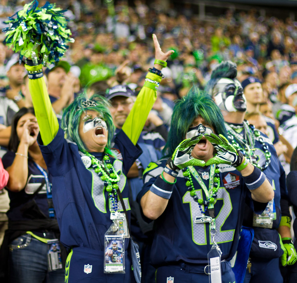Image result for seattle seahawks fan