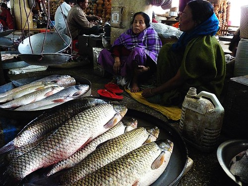 Ima keithel or mother 39 s market imphal manipur inside for Hagen s fish market