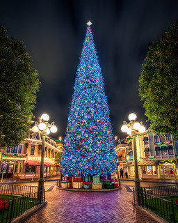 The Disney Christmas Tree | by Justin in SD