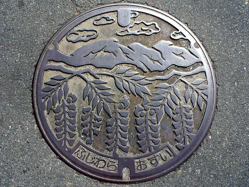 Fujiwara Mie, manhole cover (三重県藤原町のマンホール)