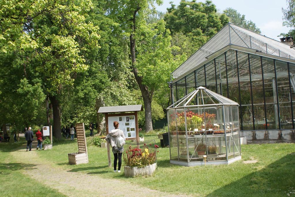 Jardin botanique de Bologne : Serre avec les plantes carnivores au premier plan.