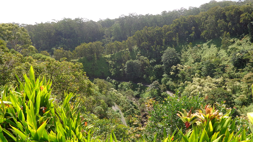 Looking down at the Hana Highway from the Garden of Eden, … | Flickr