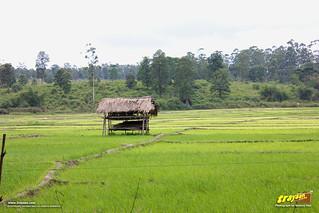 checkpost at Karnataka-Kerala border in the Kozhikode-Mysore-Kollegal Highway, NH 212 (New No.: NH766), Karnataka, India