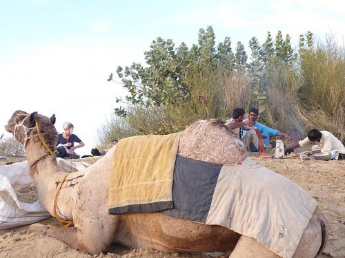 jaisalmer-jr 1-etape 3 - dunes (8)