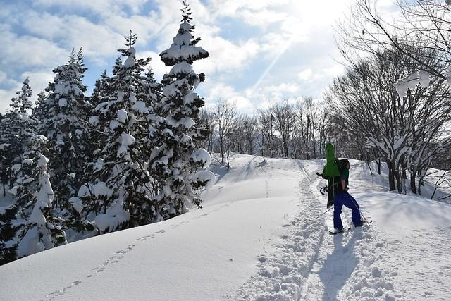 守門岳 雪の林間コース