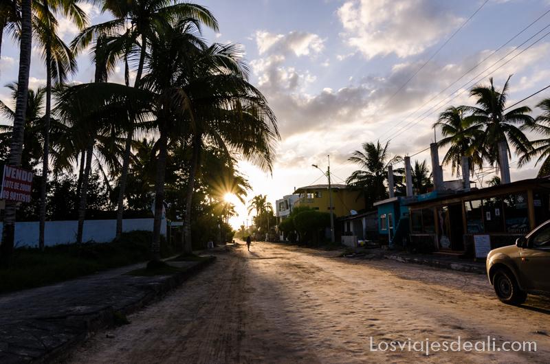 vivir en las islas galapagos calle de Isabela
