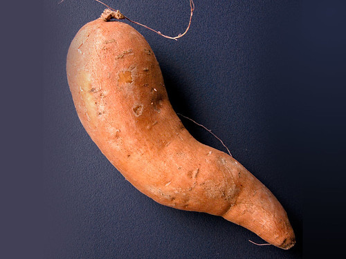 Sweet potato: 10 winter super foods. | by Elise Nutrition
