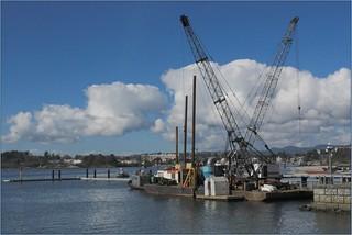 Victoria Harbour Marina 1