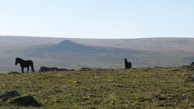 Hen Tor from Eastern Tor