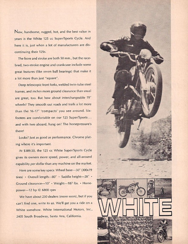 White 1966