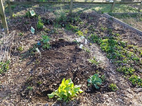 April 2 Garden Update