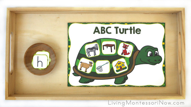 ABC Turtle - Beginning Letter Sounds