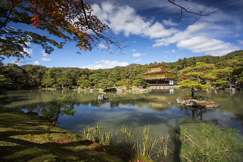 The green surroundings at the Golden Pavilion in Kyoto, Japan | by Tim van Woensel