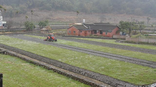 農業多功能價值,應以國家力量保護。圖為苗栗苑裡稻鴨庄。圖片來源:新竹林管處