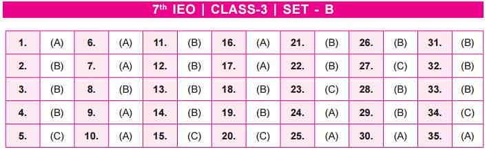 IEO SET B Class 3 Answer Key