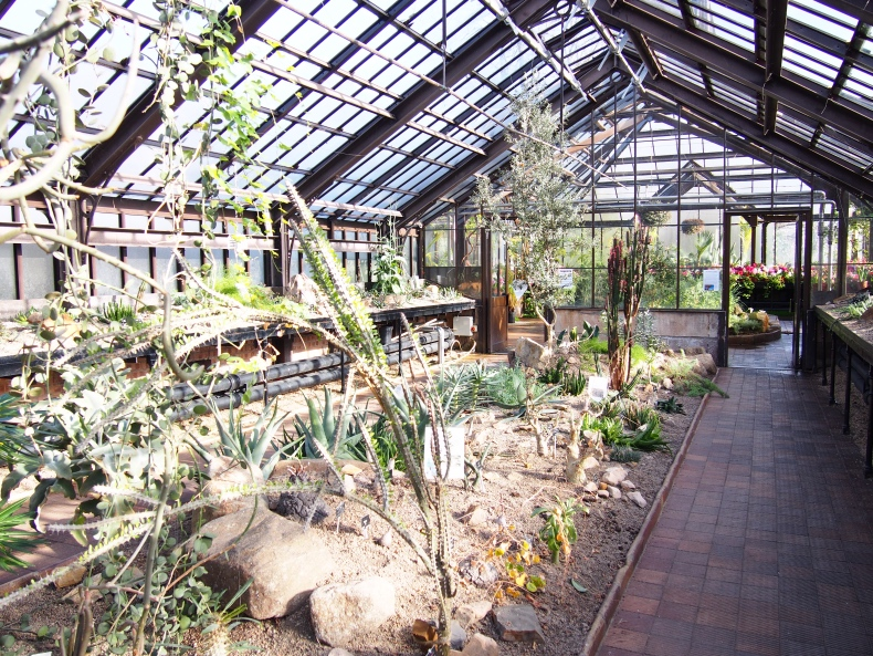What to see in Glasgow: Botanic Gardens