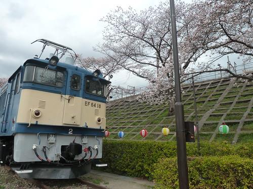 電気機関車 EF6418と甚六桜