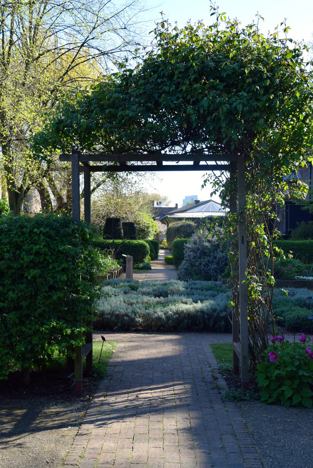 Historical Gardens at The Geffrye Museum of the Home | www.rachelphipps.com @rachelphipps