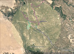 7 Babylon, Iraq 80K