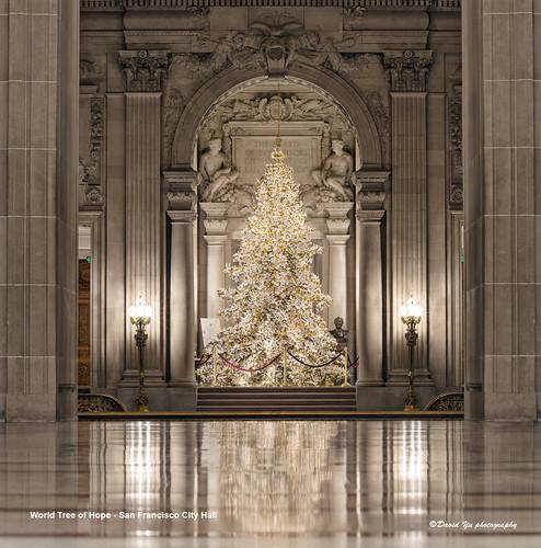 San Francisco City Hall And Christmas Tree Stock Image ...  San Francisco City Hall Trees