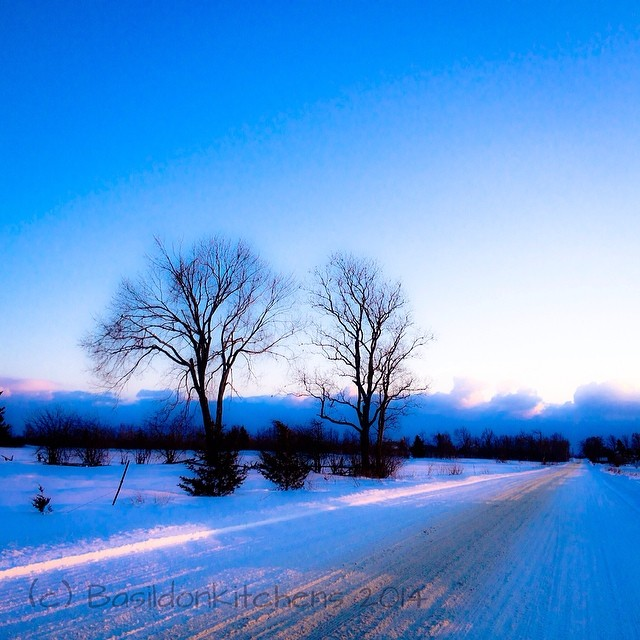 10/2/2014 - I am ... {so fortunate to live in this beautiful area} Sunset on the way home from work. #fmsphotoaday #winter #snow #trees #road #princeedwardcounty #sunset #countryroads #rural