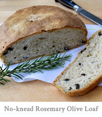 No-knead Rosemary & Black Olive Loaf