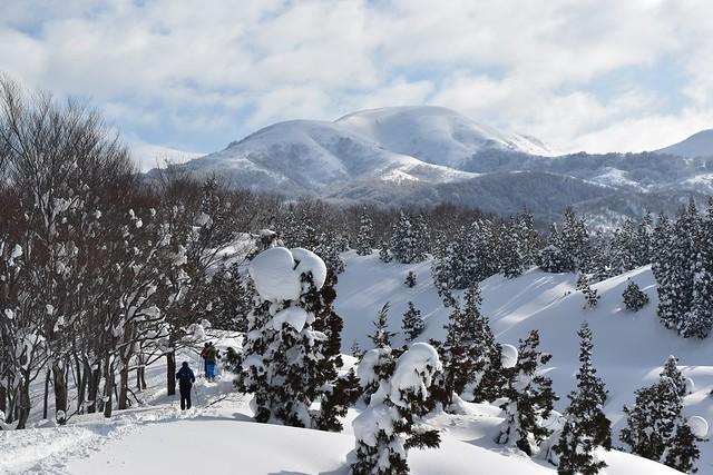 登山道から見る雪の守門岳