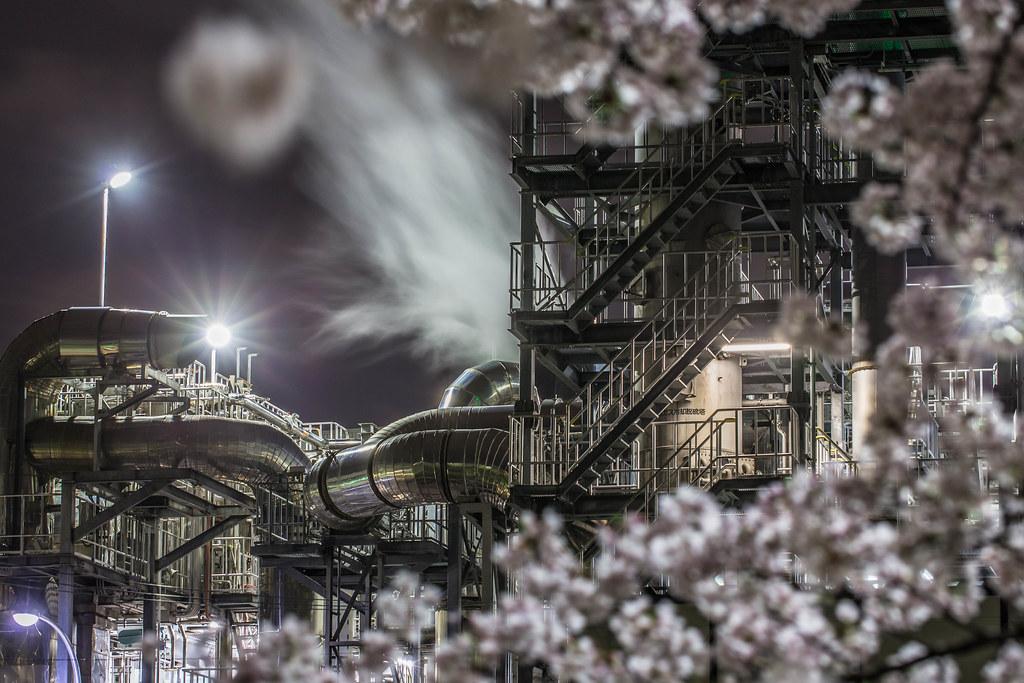 工場SAKURA