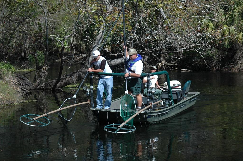 Terms Of Use >> Electrofishing Boat | Electrofishing boats use a generator ...
