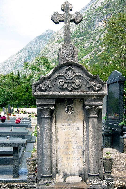 Надгробный памятник Николичей