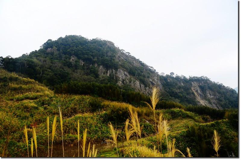 相思園下方望尖石山