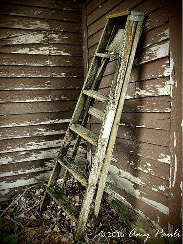 The Old Ladder | by wingedpaths