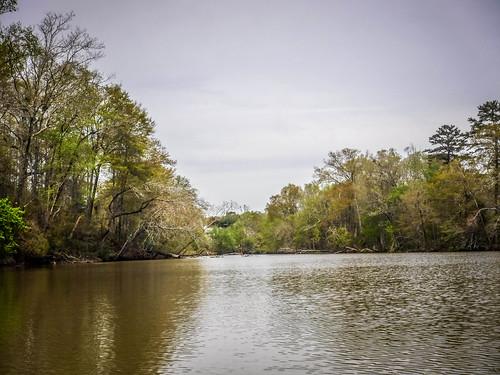 Saluda River at Pelzer-30