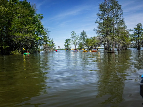 Paddle to Church Island with the Tri-County Blueways Paddlers-029