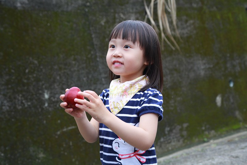 吃現採的甜桃