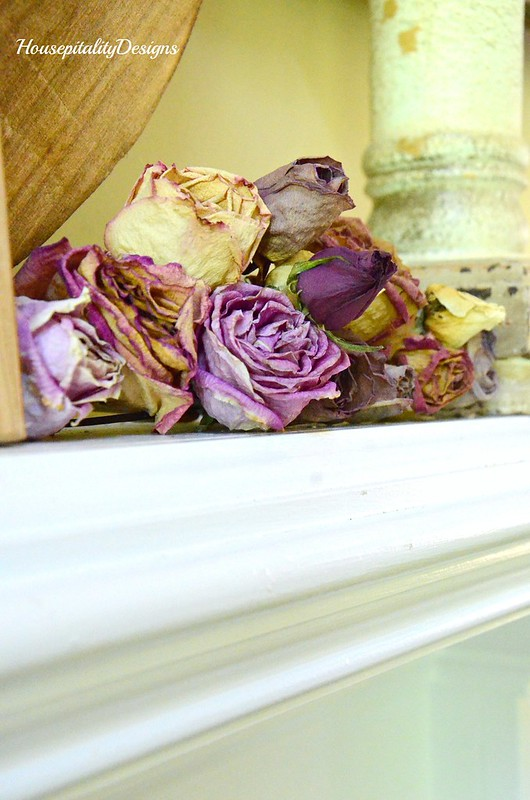 Dried Roses-Housepitality Designs